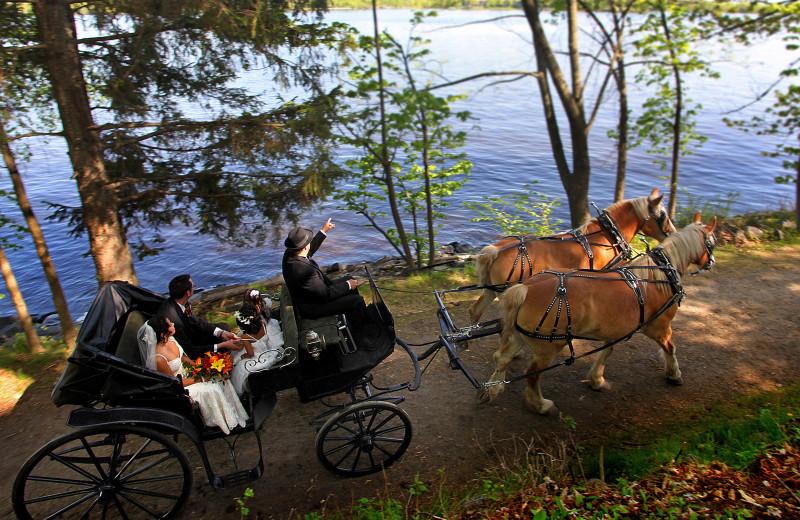 Carriage ride at Fairmont Le Chateau Montebello.