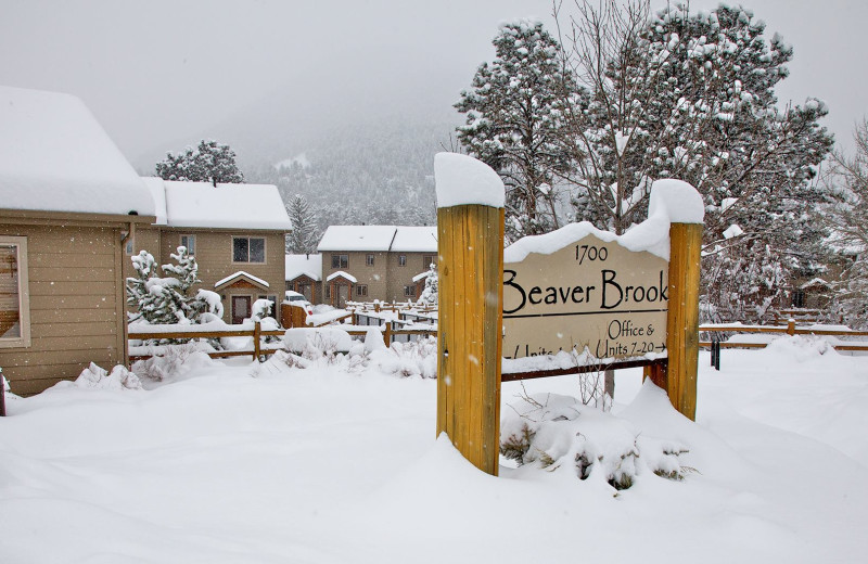 Winter time at Beaver Brook on the River.