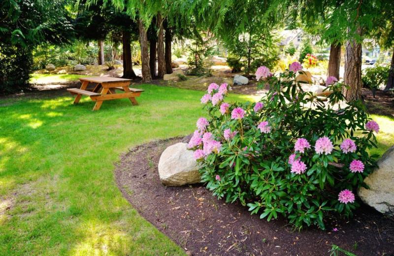 Picnic tables at Ocean Trails Resort.