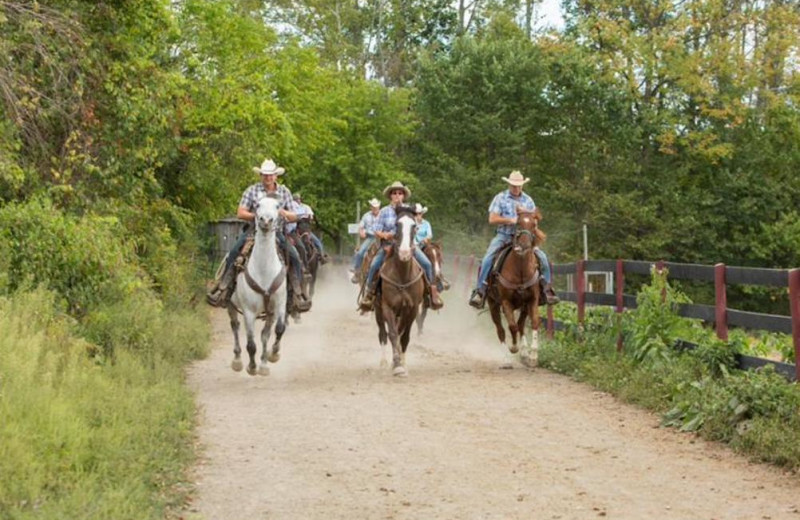 Horseback Riding at Pine Ridge Dude Ranch.