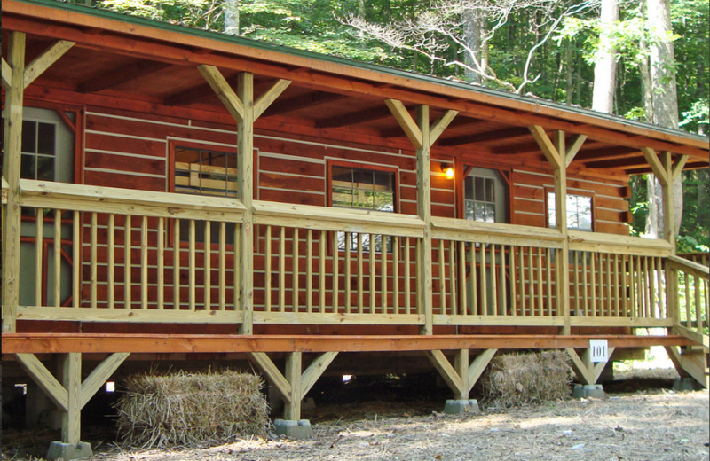 Group cabin at ACE Adventure Resort.