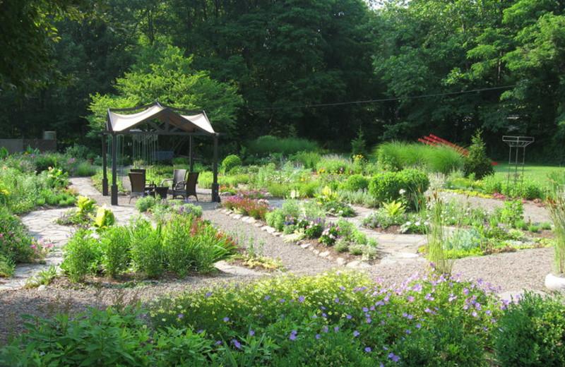 The Garden at The Settlers Inn