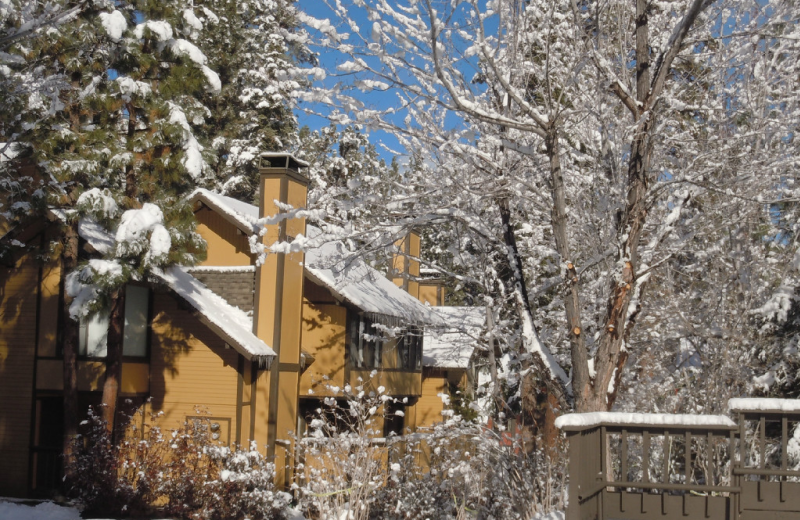Winter exterior at Escape for All Seasons.