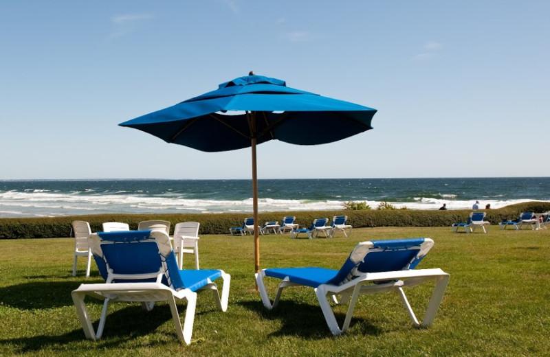 Patio chairs at Beachmere Inn.