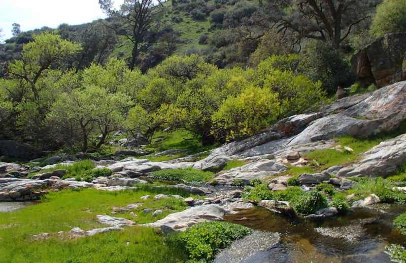 Scenic views at Rankin Ranch.