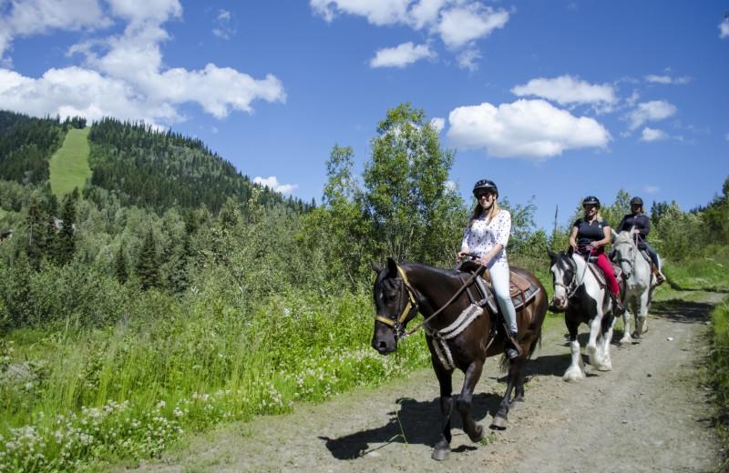 Horseback riding at Bear Country Property Management (2018) Ltd.