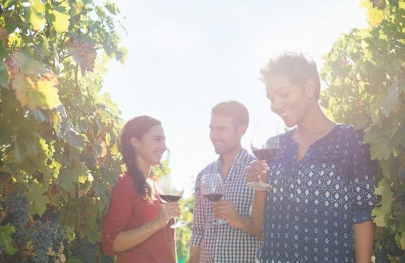 Wine tasting at Harvest Inn by Charlie Palmer.