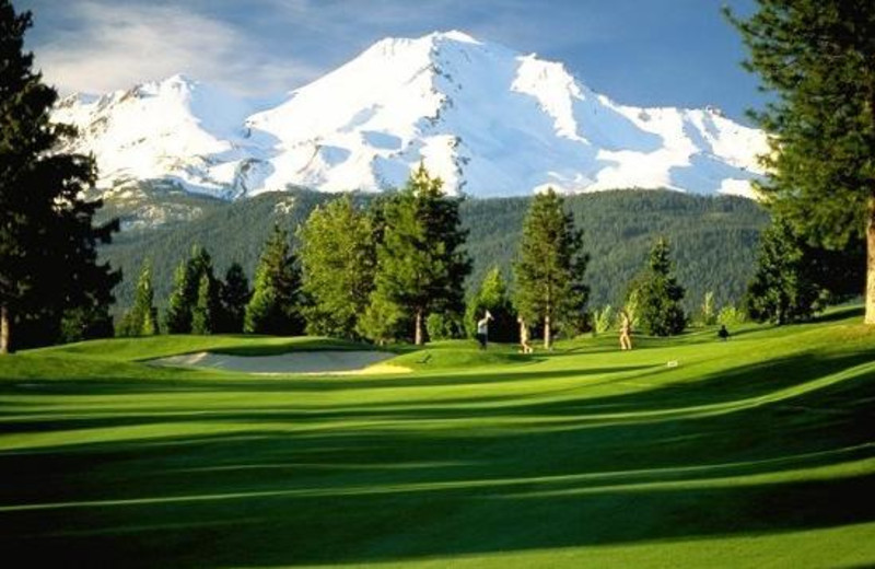 Golf Course at Mount Shasta Resort