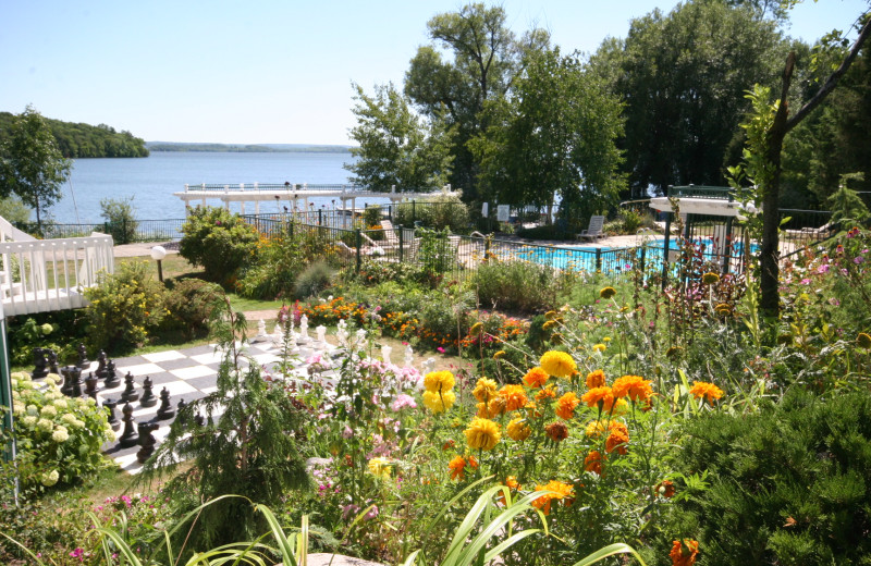 View from Elmhirst's Resort.