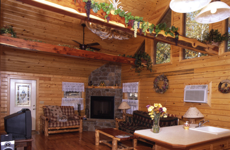 Interior view of Bear Mountain Log Cabins.