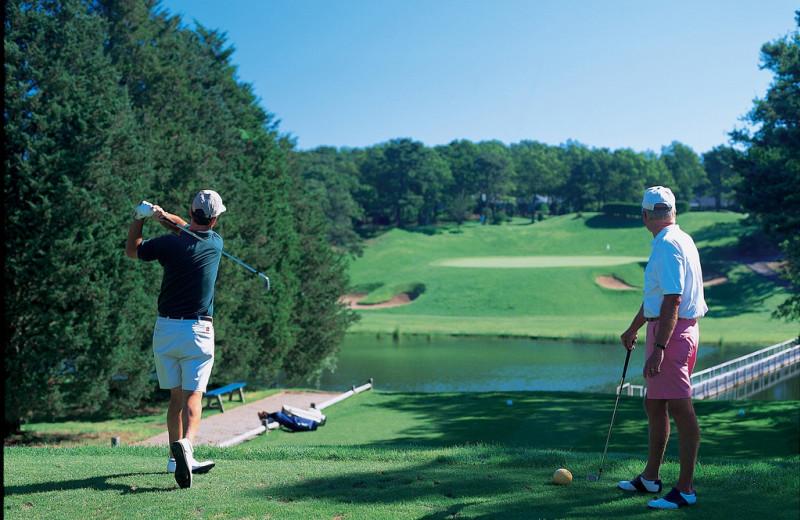 Golf near Vineyard Square Hotel & Suites.