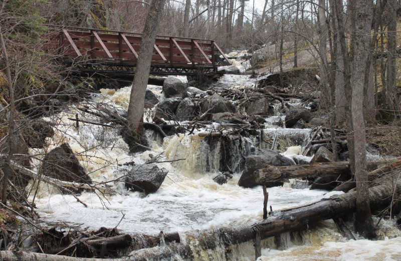 Creek at Tallpine Lodges.