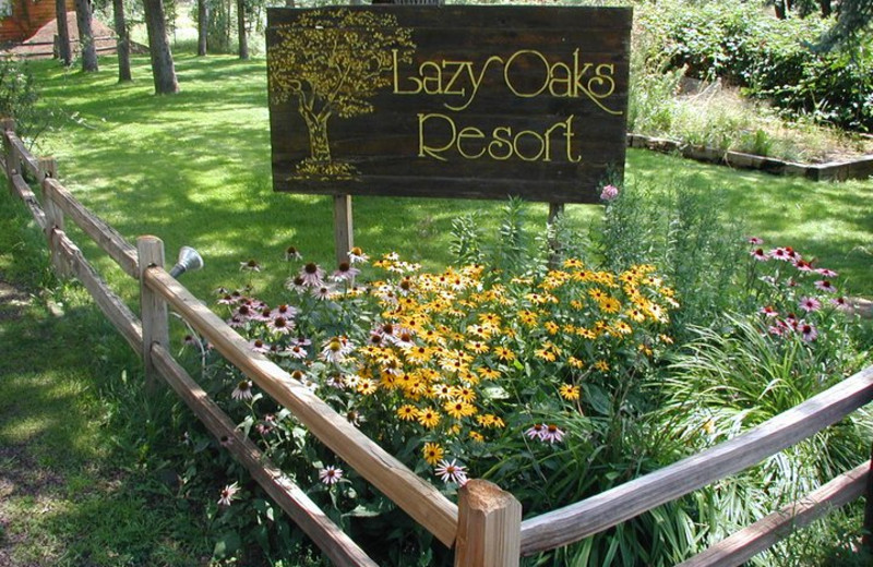 Beautiful gardens at Lazy Oaks Resort.