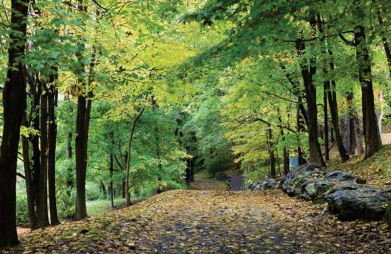 Beautiful walking trails at Wyndham Vacation Resorts Shawnee Village.