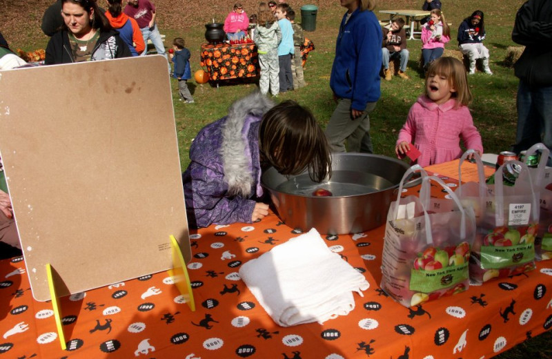 Fall Festival at Glen Falls House