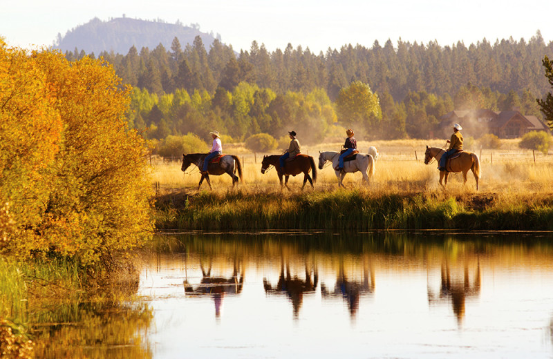 Guided trail rides and pony rides are available at the Sunriver Stables
