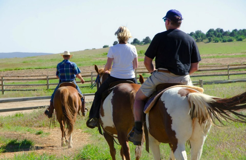 Horseback riding at Zion Mountain Ranch.