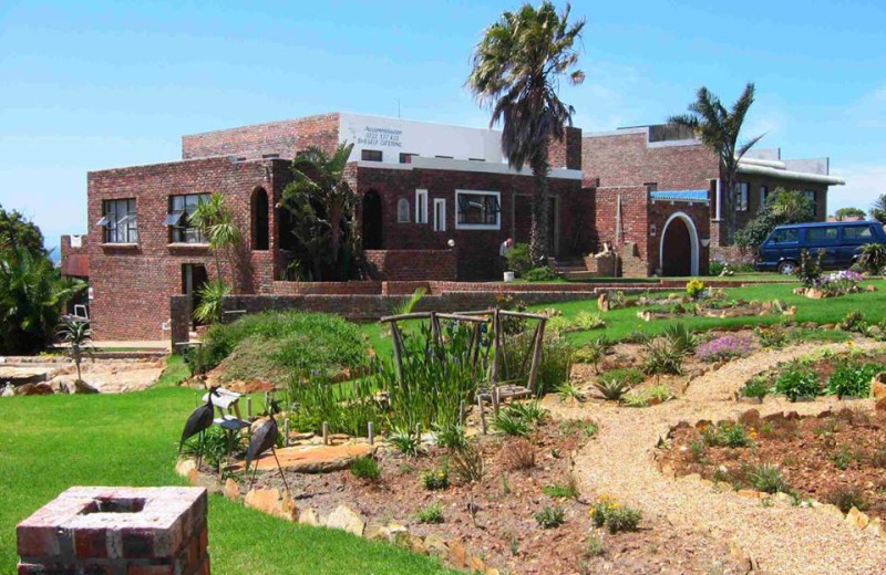 Exterior view of Dolphin View Guesthouse Jeffreys Bay.