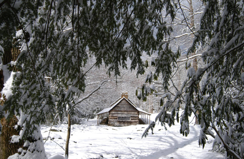 Winter at Smoky Creek Cabin Rentals.