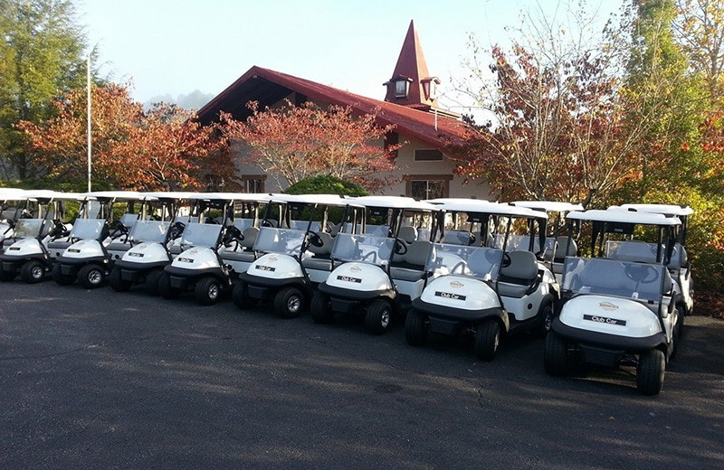 Golf carts at Valhalla Resort Hotel.
