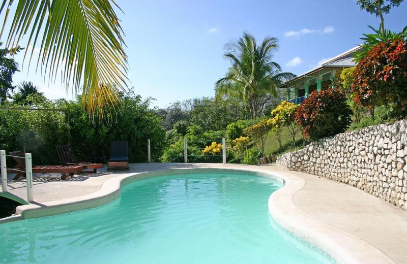 Outdoor pool at Aparthotel Mirador de Samara.