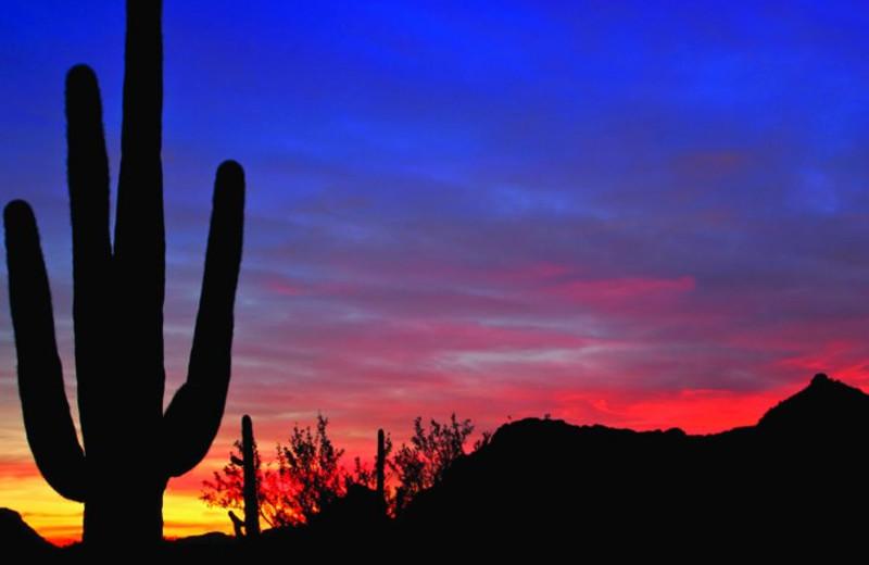 Sunset at Arizona Grand Resort.