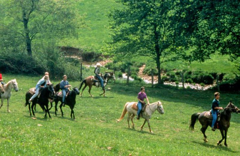 Horseback riding at Forrest Hills Resort.