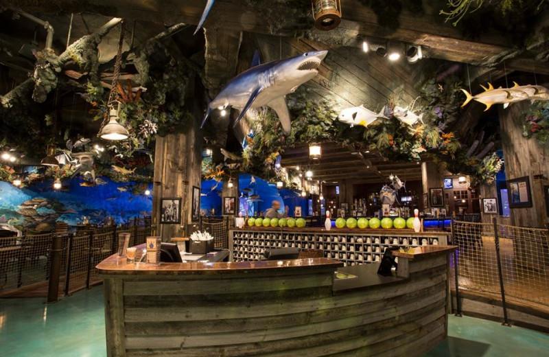 Interior view of Big Cypress Lodge.