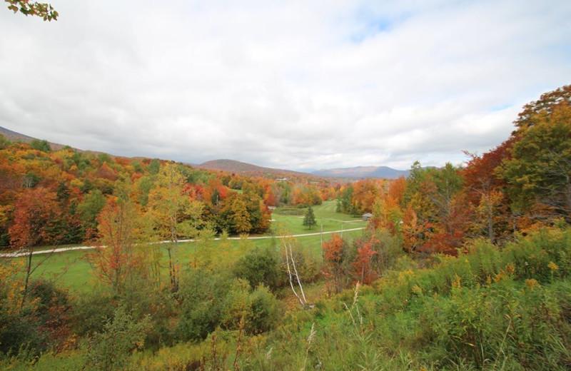 Fall colors at The Killington Group.