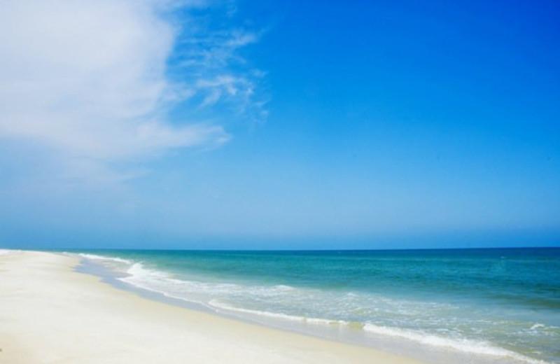 The beach at Paradise Palms Inn.