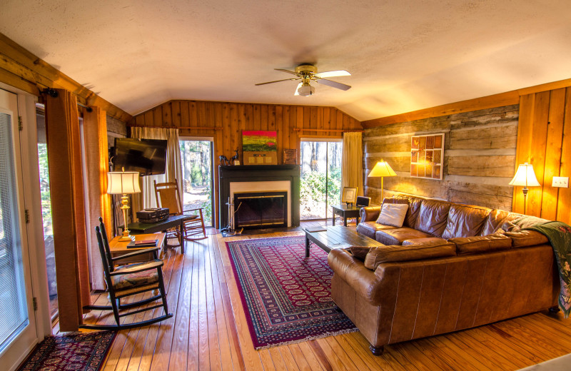 Cabin living room at Asheville Cabins of Willow Winds.