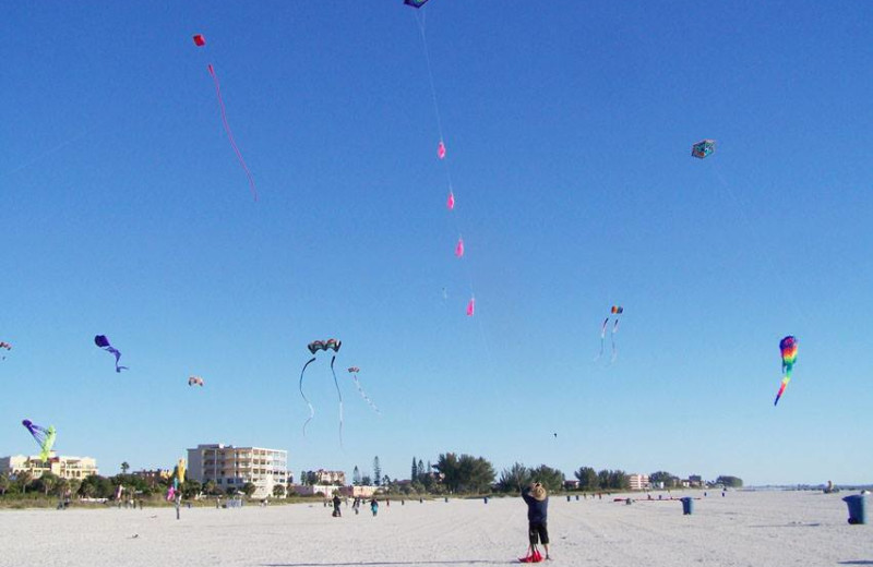 Kite Festival on the beach near Madeira Bay Resort.