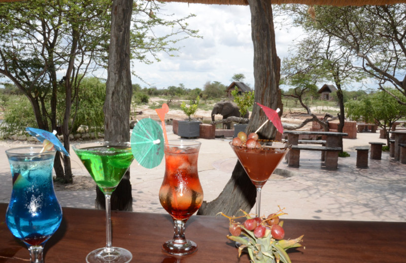 Drinks at Elephant Sands Safari Lodge.