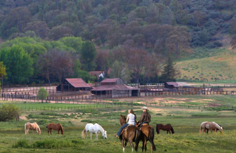 Exterior of Rankin Ranch.