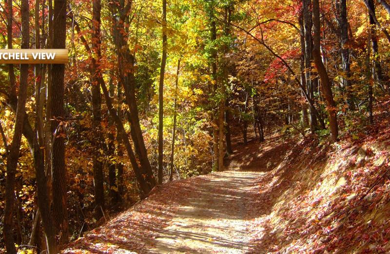 Trail at High Rock Rentals.