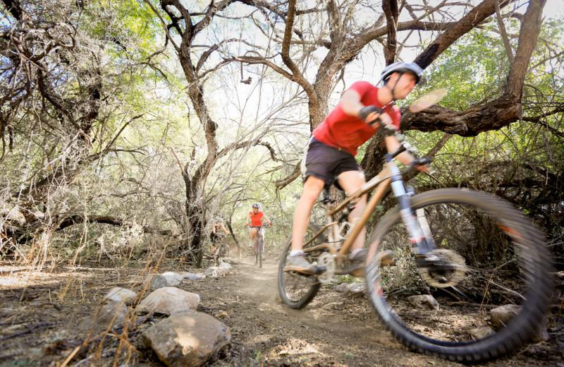 Mountain biking at Grand View Lodge.