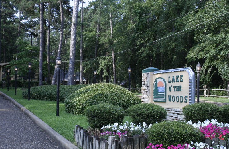 Welcome to Lake O' The Woods.