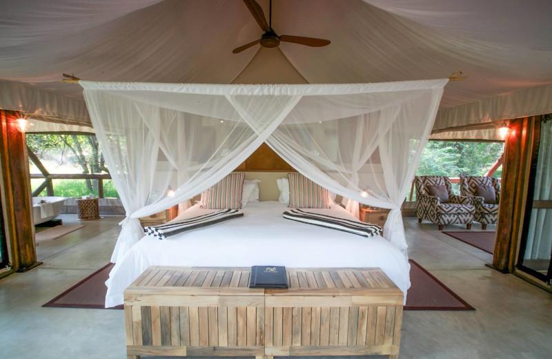 Guest room at Tuli Safari Lodge.