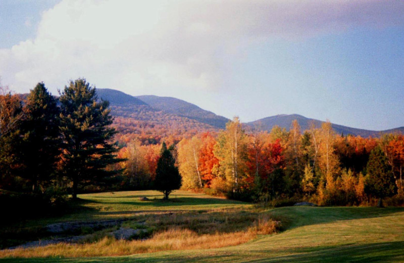 Golf course near English Rose Inn.