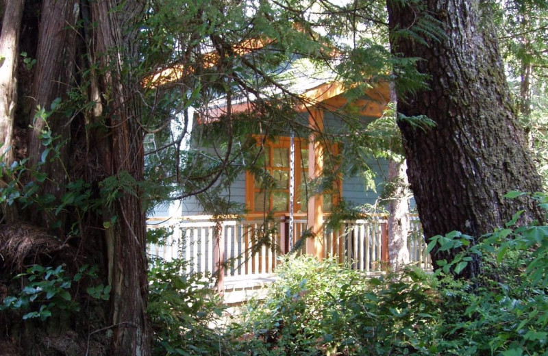 Exterior view of Snug Harbour Inn.