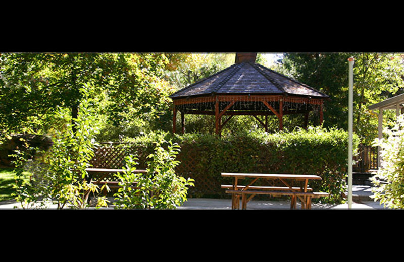 Garden at Nevada City Inn.