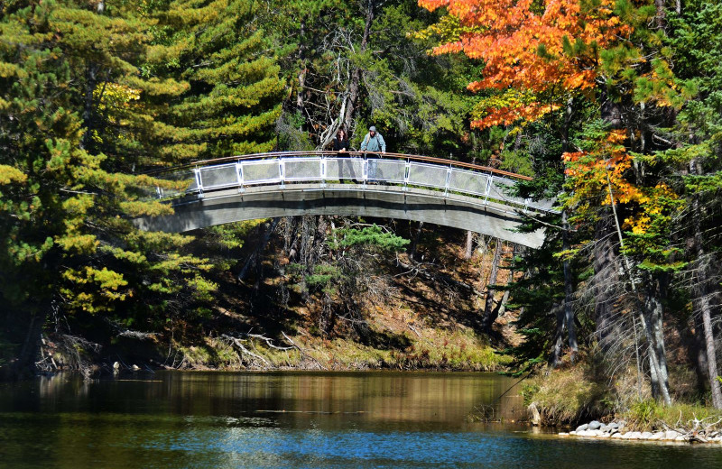 Bridge at UAW Black Lake.