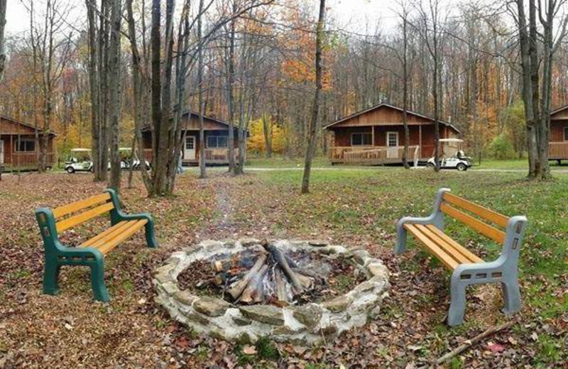 Fire pit at The Woods At Bear Creek Glamping Resort.