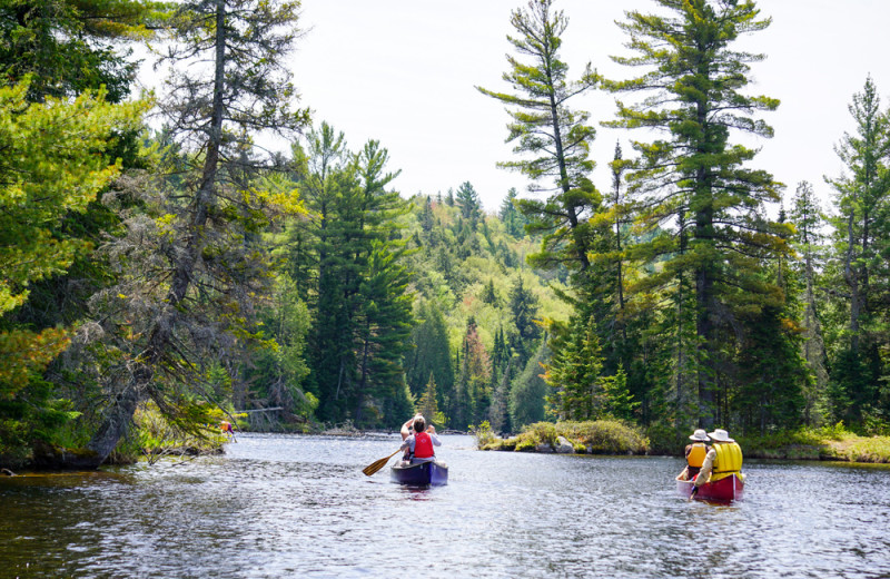 Kayaking at Wolf Den Hostel and Nature Retreat.