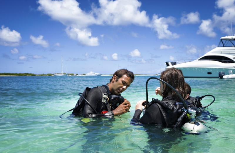 Diving at Oceans Edge Key West Resort & Marina.