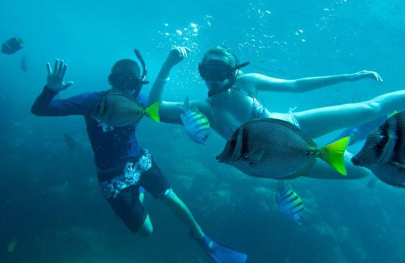 Underwater Activities at Pueblo Bonito Los Cabos