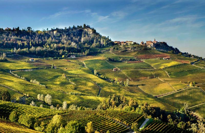 Farmland at Giacomo Marengo.