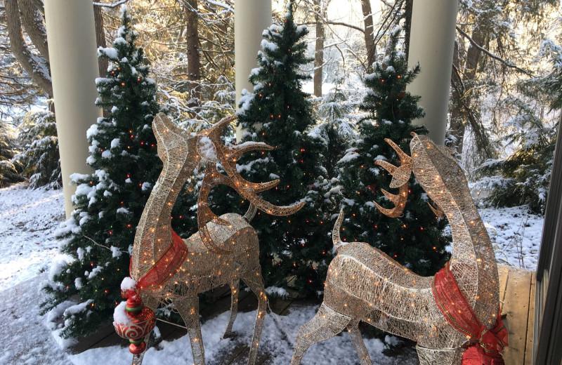 Christmas decor at Chateau Lake Logan.