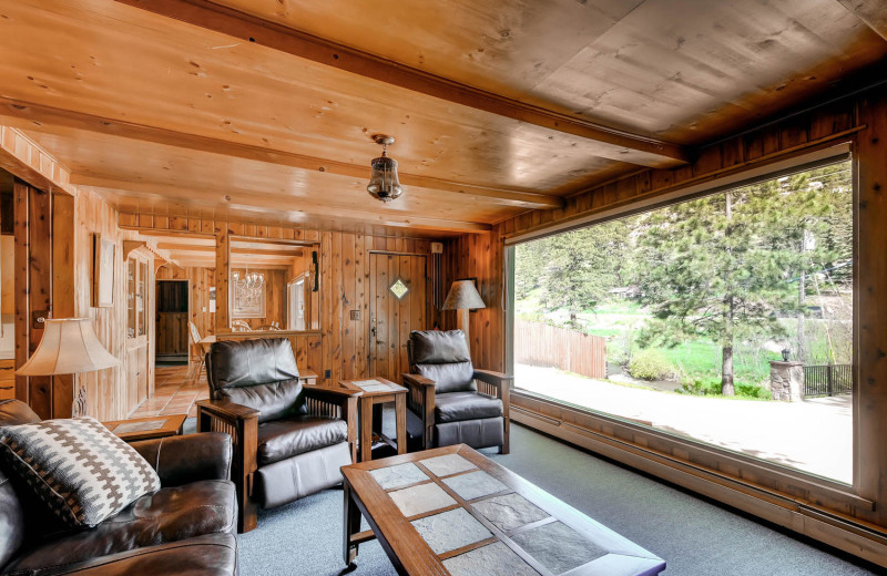 House living room at Colorado Bear Creek Cabins.