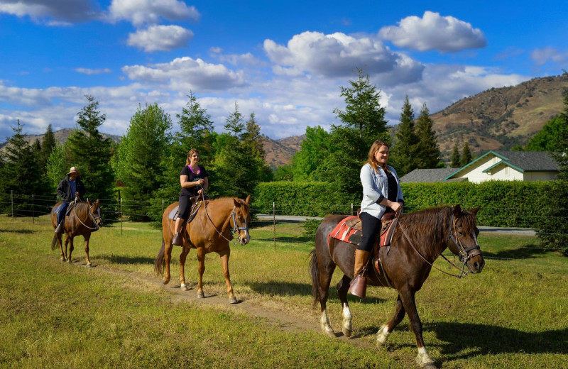 Horseback riding at Wonder Valley Ranch Resort.
